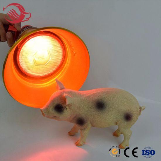 Livestock Pig Farm Golden Color Heating Bulb Lampshade