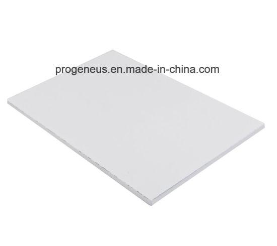 China Progeneus Fiber Cement Ceiling Panels Suspended