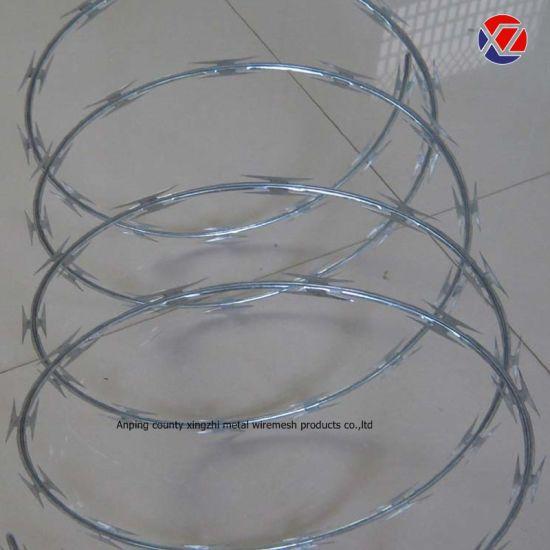Concertina Coil Razor Wire