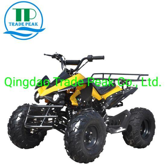 125cc Mini ATV Quads with Ce Certificate