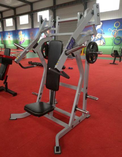 Fitness Machine Hammer Strength / Sissy Squat Bench (SF1 3062)
