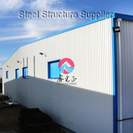 Steel Workshop/Warehouse/ Steel Structure Warehouse in Argentina (SS-14538)