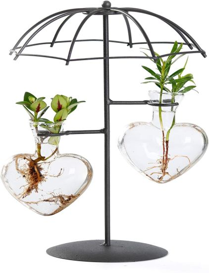 Tabletop Hydroponics Plant Terrarium Desktop Glass Planter 2 Heart Metal Holder Vase for Office Home Garden Decoration