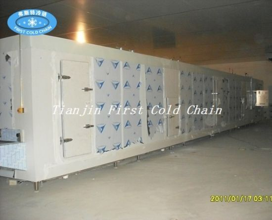Sw Model Fruit, Vegetable, Seafood Tunnel Quick Freezing Blast Freezer pictures & photos