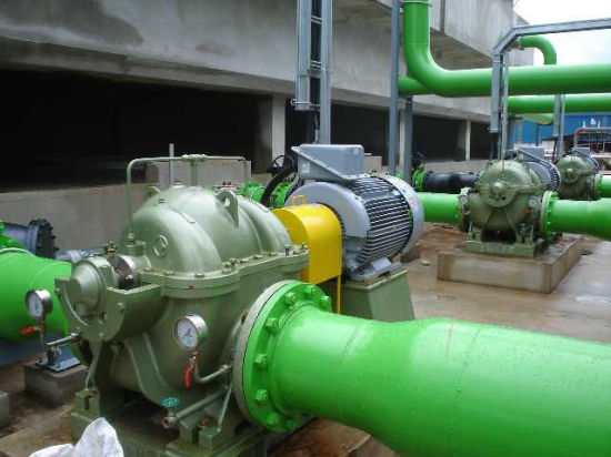 Axial Split Casing Centrifugal Pump (SOW) pictures & photos