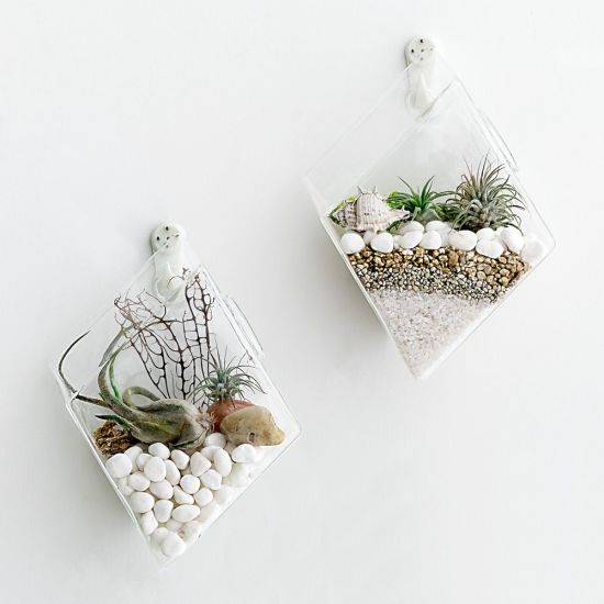 China 2 Pack Wall Hanging Plant Terrarium Glass Planter Diamond
