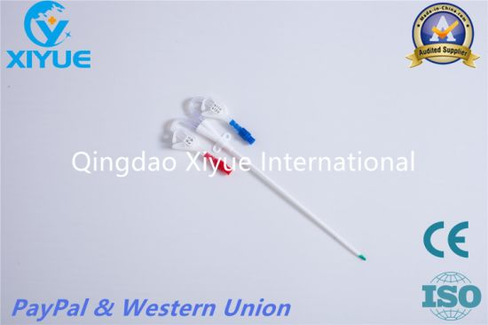 Hemodialysis Catheter with Ce Quality