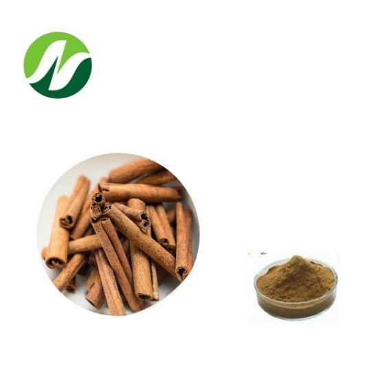 High Quality ISO Factory Cinnamomum Cassia Cinnamon Bark Extract