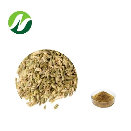 High Quality Cheap Foeniculum Vulgare Fruit Fennel Seed Extract
