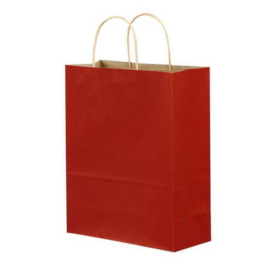 Twisted Ropes Brown Kraft Paper Red Bag Retail pictures & photos