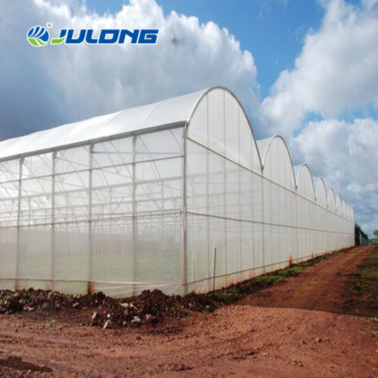 Garden Greenhouse Vertical Nft Growing Hydroponic Systems Multi- Span Plastic Film Greenhouses