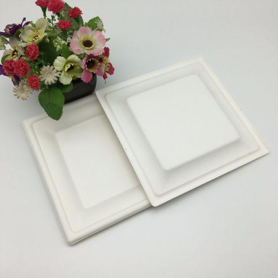 Biodegradable Tableware Bagasse Pulp Food Storage Plates & China Biodegradable Tableware Bagasse Pulp Food Storage Plates ...