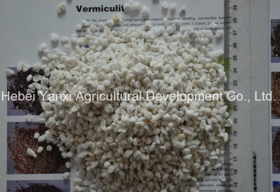 Export Agricultural Fertilizer Organic Fertilizer Soil Improvement of Expanded Perlite (Factory) pictures & photos
