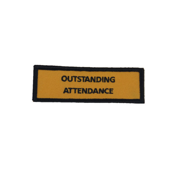 Specialized Custom Shape Iron on Embroidery Patch for Cloth