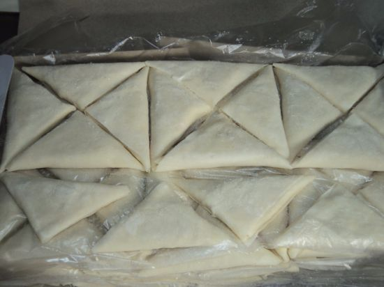 100% Hand Made 12.5g/pieces Fresh Vegetable Frozen Triangle Egg Roll pictures & photos