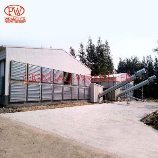 Poultry Farm Equipment Automatic Chicken Layer Battery Cage for Sale in Philippines