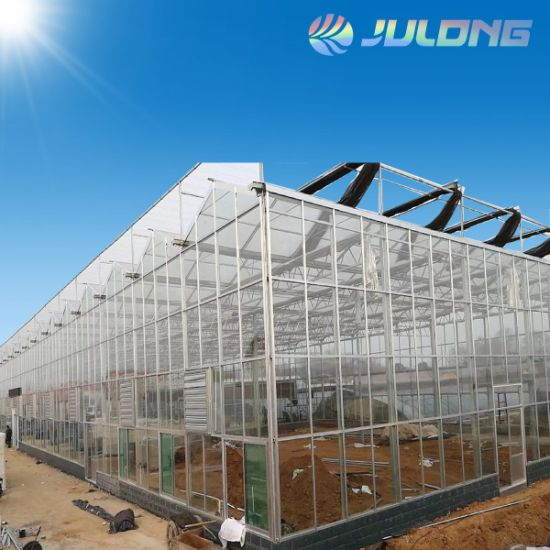 Light Deprivation Agricultural Glass Greenhouse for Medicine Plant with Drip Irrigation System