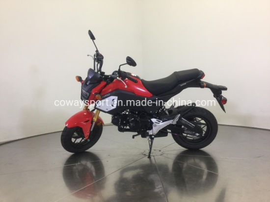 Factory Sell High Quality Best Price Grom Racing Motorcycle