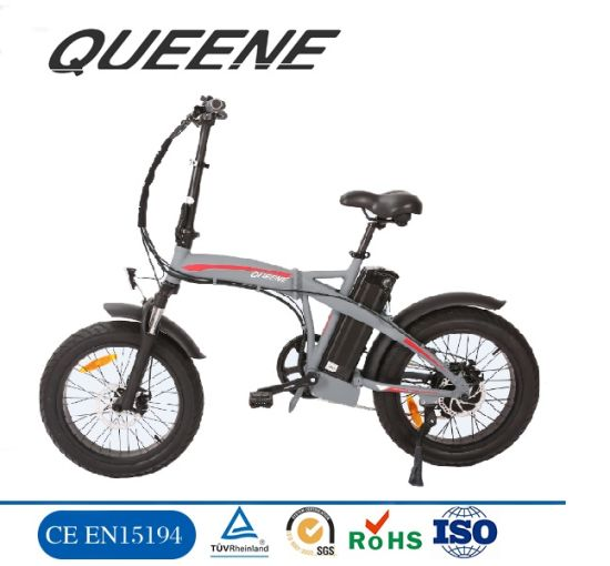 Queene/Hot Sale 36V 250W /48V 1000W E Bicycle, EL Fatboy/Elcykel/Electric Fat Bike pictures & photos