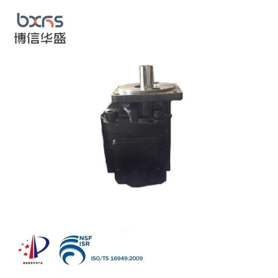 Cbhs-2100A China Export Factory Sale Hydraulic Oil Transfer Gear Flow Pump