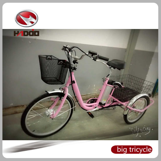 Ce Approval Mini 3wheel Electric Bicycle for Elder pictures & photos