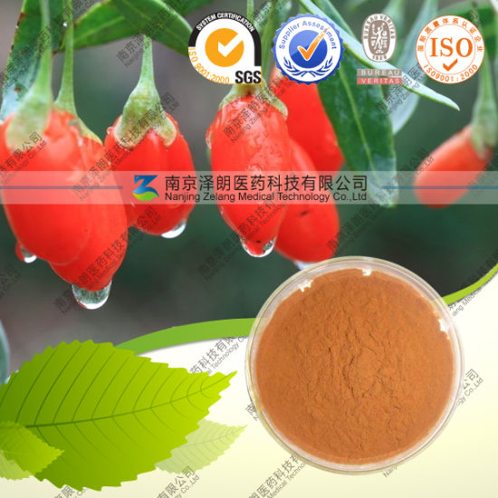 Factory Supply Water Soluble Goji Berry Extract Powder pictures & photos