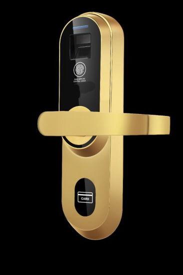 China WiFi Bluetooth Fingerprint Biometric RFID Door Locks