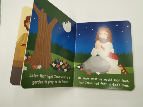 Exquisite Color Cheap Bible with Book Case Children Bible Stories Wholesale  Bible Printing Service with Fast Delivery