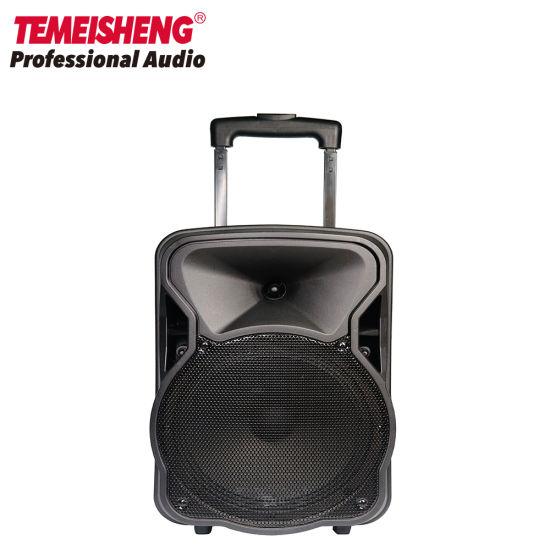 Temeisheng 10 Inch Wireless Outdoor Trolley Speaker