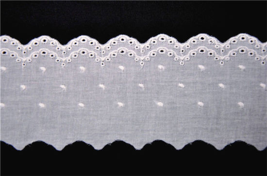 Low Price Embroidery Lace for Clothing