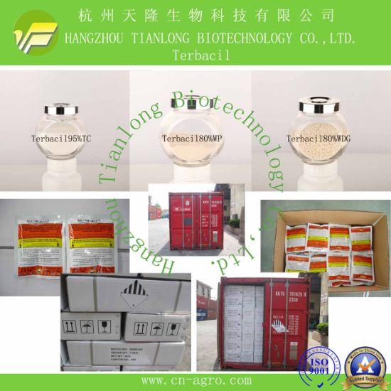 Terbacil (95%TC, 80%WP)-Herbicide