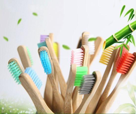 Bamboo Brush Custom OEM Soft Household/Travel Nylon Oral Care Toothbrush