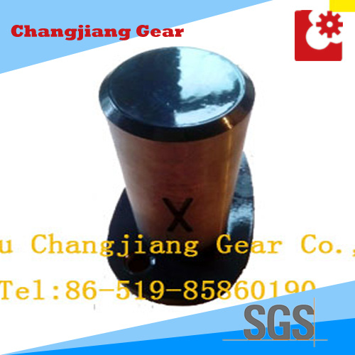 Forging Forged Drive Gear Shaft