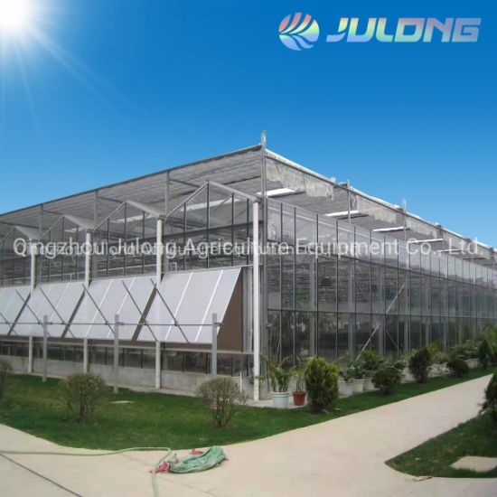 Low Cost Durable Venlo Glass Building Material Greenhouse for Vegetables