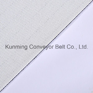 Conveyor Belt (ESS80/2: 0+0.5J1/2.0B/AS) Processing Patterned pictures & photos