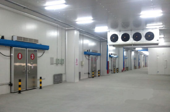 Cold Storage Room B1 Level Fireproofed pictures & photos