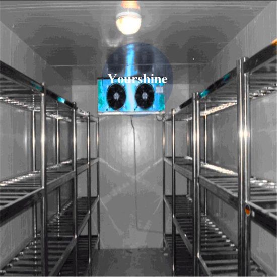 Cool Room Cold Storage for Meat Logistics Center with Competitive Price