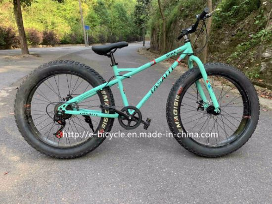 Disc Brakes Beach Cruiser Fat Tire Mountain Bike for Adult pictures & photos