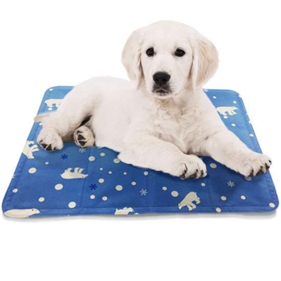 Resuable Gel Dog Cool Pad Pet Cooling Mat for Summer
