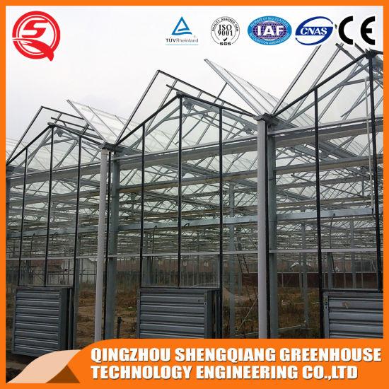 Steel Structure Gl Garden Greenhouse