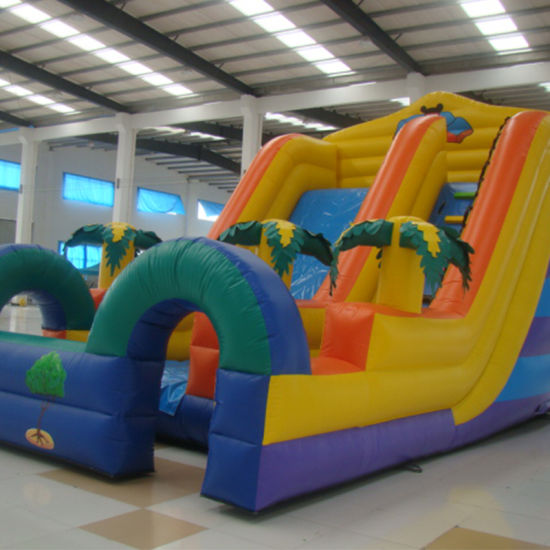Inflatable Double Slide for Children