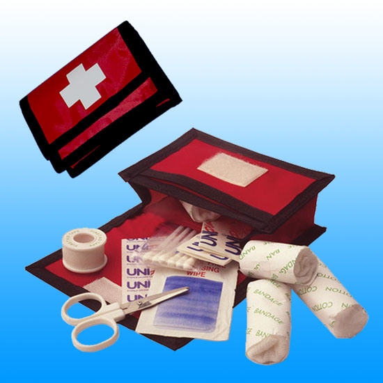 Ce, ISO, FDA Personal Travel Mini First Aid Kit # Kbg-A029