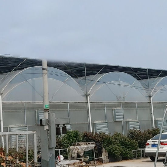 Hot-Galvanized Flowers Green House Agricultural with Plastic Film