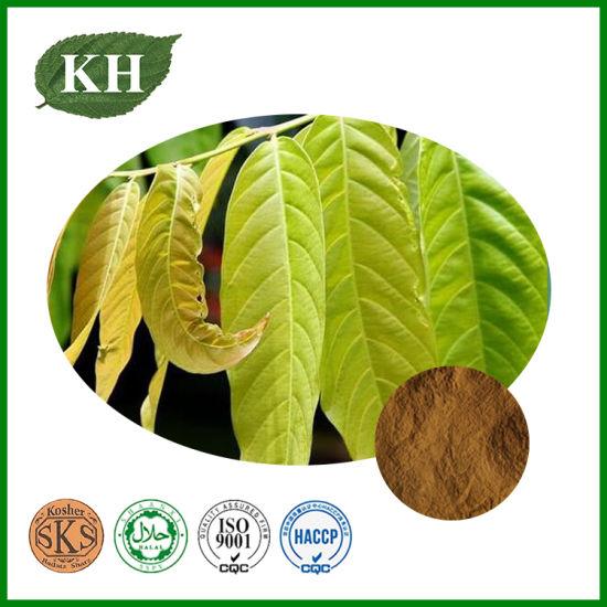 High Quality Mango Leaf Extract Mangiferin 50%, 90%, 98%, CAS: 4773-96-0