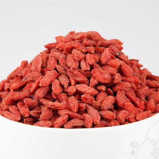 Wholesale 100 Dried Goji Berry Chinese Wolfberry China Goji