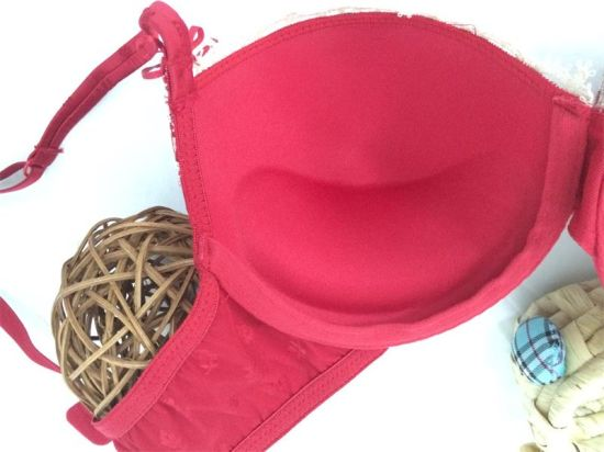 Classic New Design Push up Bra and Panty for Ladies (FPY441) pictures & photos