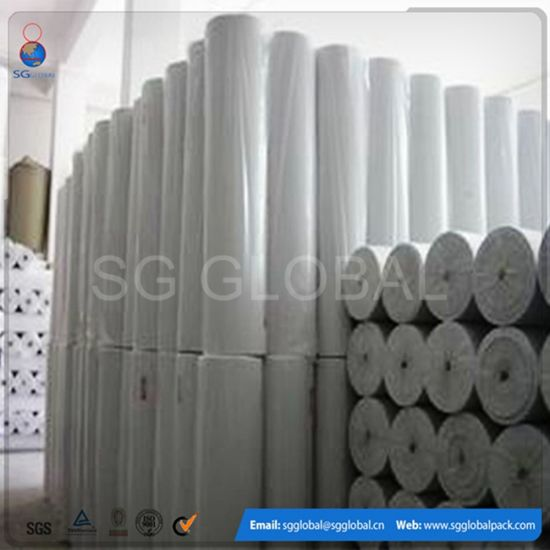 100% Polyester Needle Punch Non Woven Geotextile in Roll pictures & photos