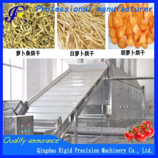 Vegetables/Radish/Garlic/Agricultural Products/Mushrooms/Hot Air/Food Machinery/Dryer/Drying Equipment
