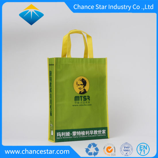Custom Eco PP Non-Woven Brand Promotion Shopping Bag