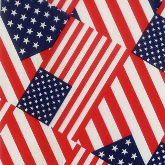 HYDROGRAPHIC WATER TRANSFER HYDRO DIPPING HYDRO DIP FILM USA FLAG SMALL